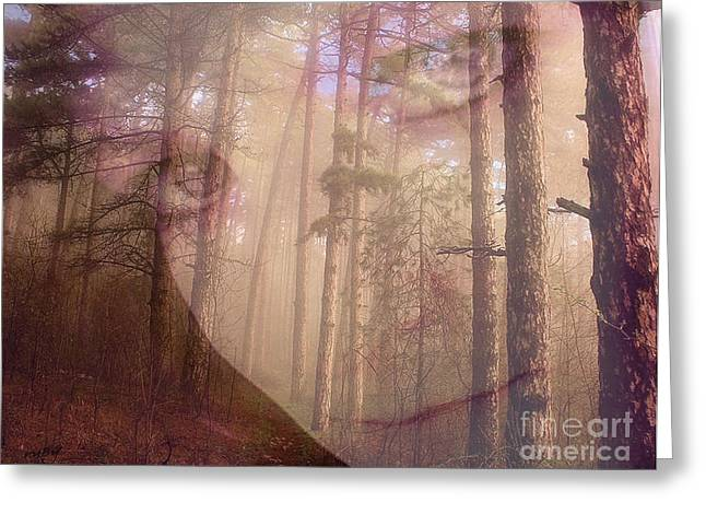 A Watchful Forest Greeting Card