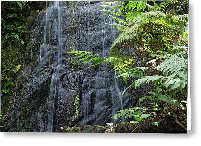 A Waterfall In The Mountain Jungles Greeting Card