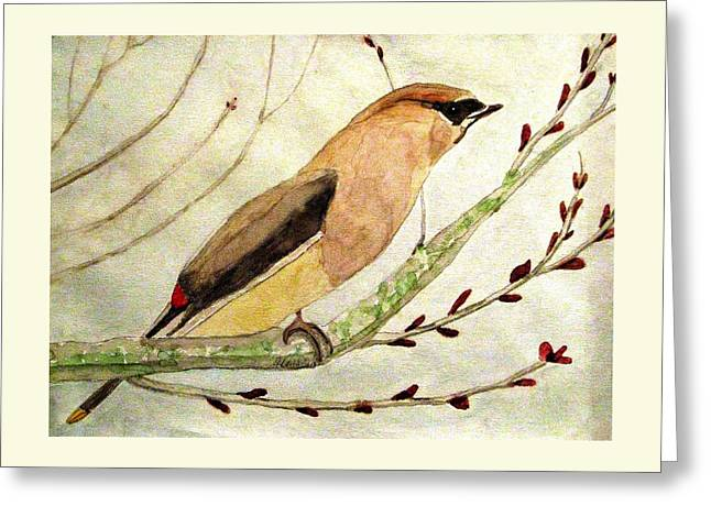 A Waxwing In The Orchard Greeting Card
