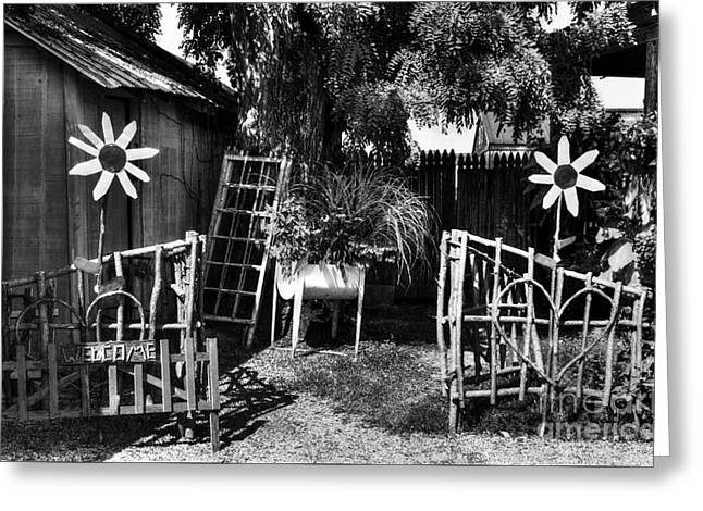 A Welcome Sign Bw Greeting Card by Mel Steinhauer