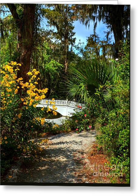 A White Bridge 2 Greeting Card