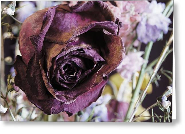 A Wilted Bouquet Greeting Card by Angi Parks