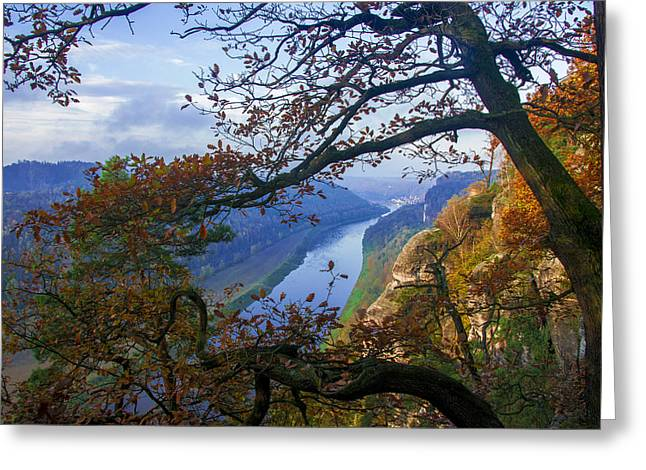 A Window To The Elbe In The Saxon Switzerland Greeting Card