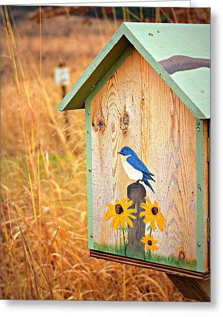 A Winter Bluebird Greeting Card by Soul Full Sanctuary Photography