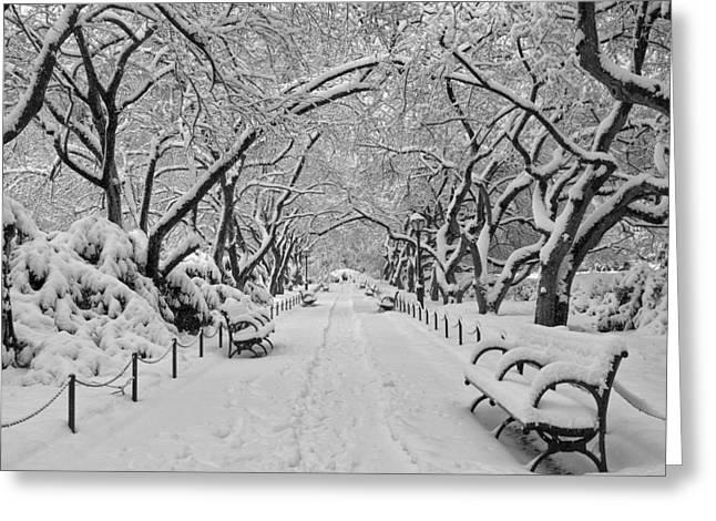 A Winter Garden Greeting Card by Cornelis Verwaal