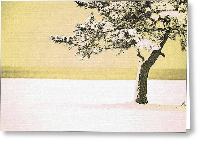 A Winter Moment Greeting Card by Karol Livote