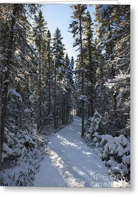 A Winter Poem.. Greeting Card by Nina Stavlund