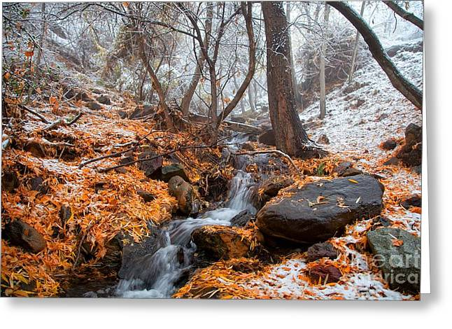 A Winter Scene In Jerome Arizona Greeting Card