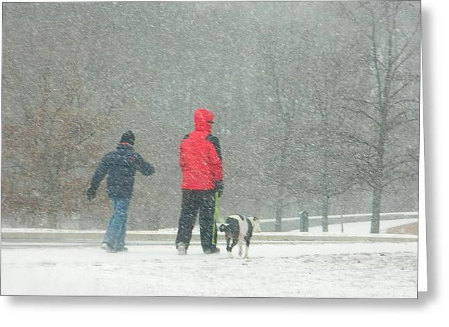 Greeting Card featuring the photograph A Winter Walk In The Park - Silver Spring Md by Emmy Marie Vickers
