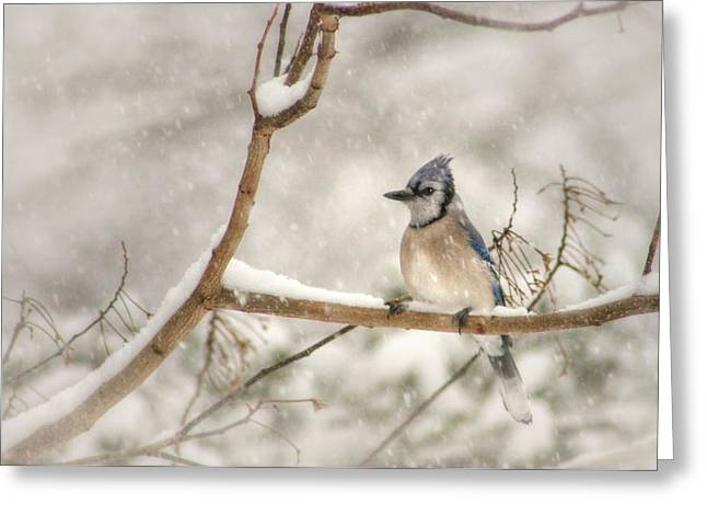 A Winter's Day Greeting Card by Lori Deiter