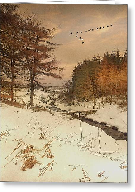 A Winters Tale Greeting Card by Roy  McPeak