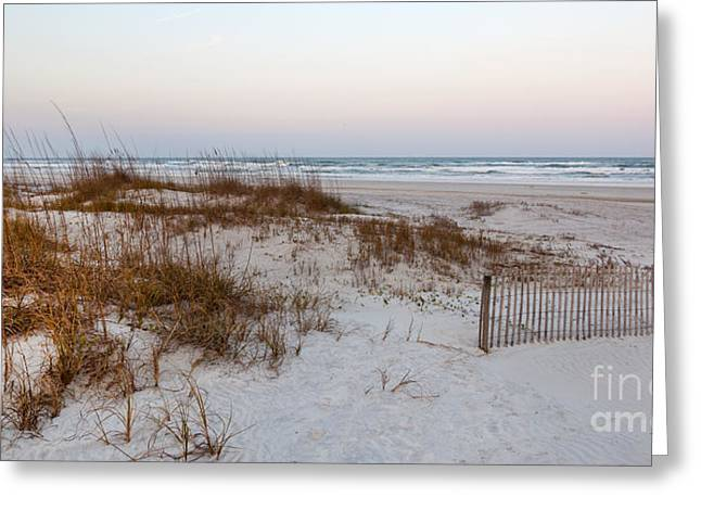 A Wintry Day At St Augustine Beach Greeting Card