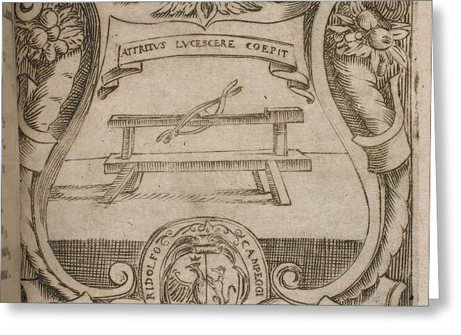 A Wooden Bench. Below Greeting Card by British Library