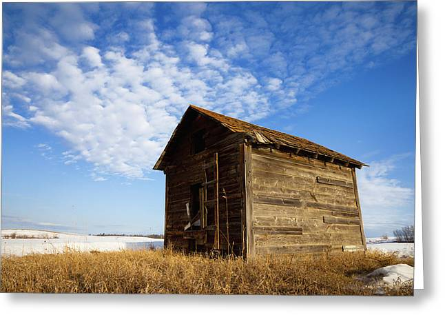 A Wooden Shed Stands Alone Greeting Card by Steve Nagy
