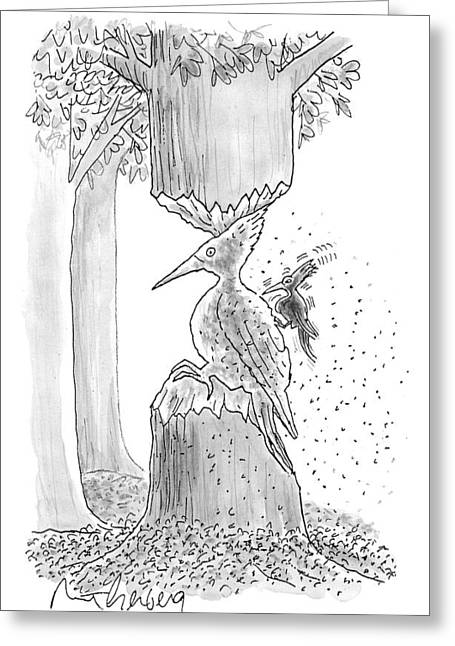 A Woodpecker Is Using His Beak To Carve Is Own Greeting Card