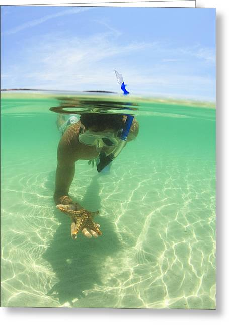 A Young Man Snorkels Holding A Starfish Greeting Card by Stuart Westmorland