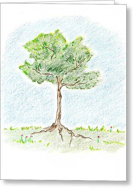 A Young Tree Greeting Card