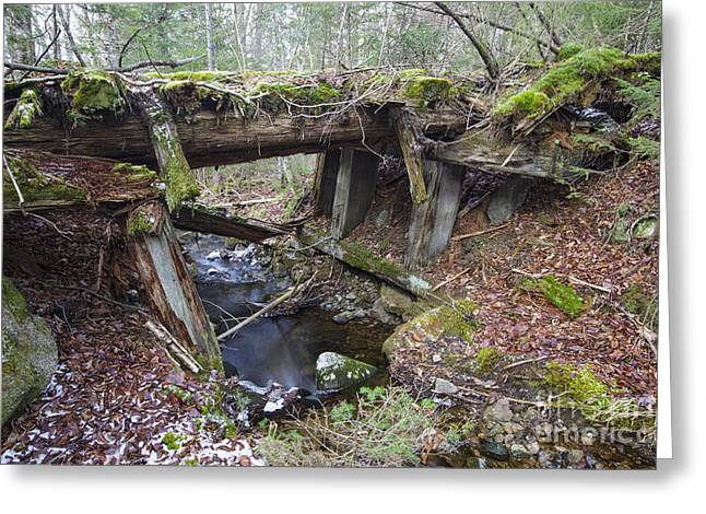 Abandoned Boston And Maine Railroad Timber Bridge - New Hampshire Usa Greeting Card