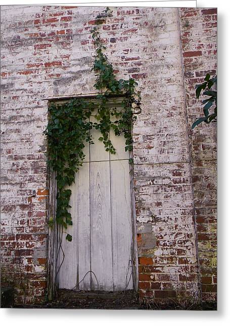 Abandoned Door Greeting Card by Warren Thompson