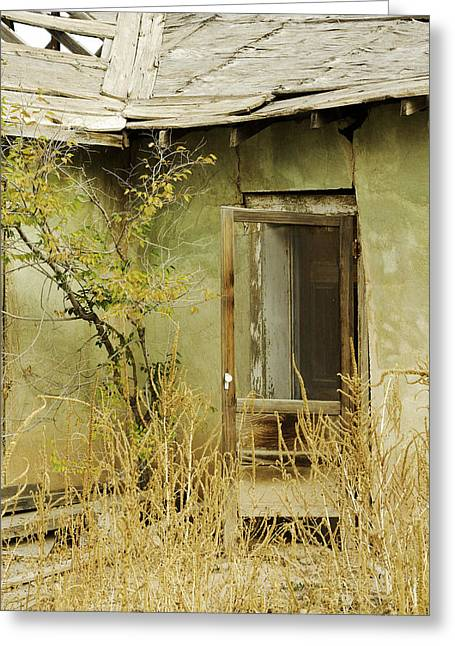 Abandoned Green House-001 Greeting Card by David Allen Pierson