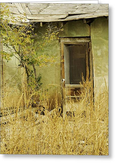 Abandoned Green House-004 Greeting Card by David Allen Pierson