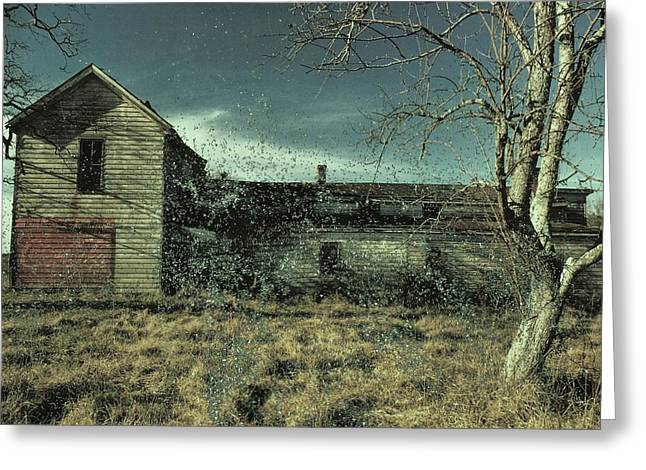 Abandoned House On A Frosty Day Greeting Card