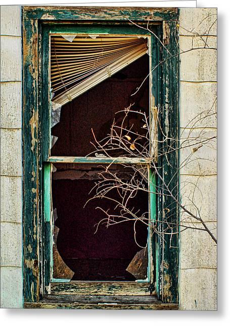 Abandoned Greeting Card by Nikolyn McDonald