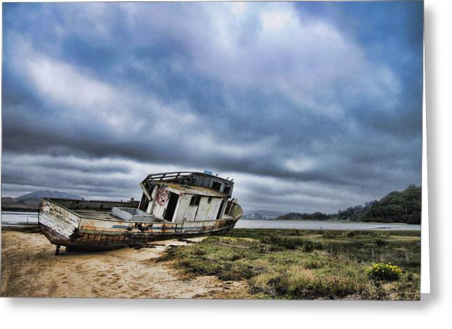 Abandoned On The Beach Greeting Card by Nancy Ingersoll