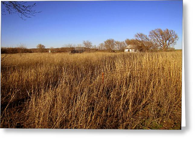 Abandoned On The Prairie Greeting Card by Ann Powell