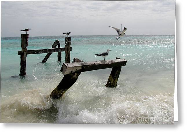 Greeting Card featuring the photograph Abandoned Pier by Sean Griffin
