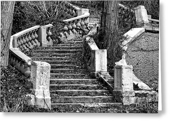 Abandoned Staircase Greeting Card by Olivier Le Queinec