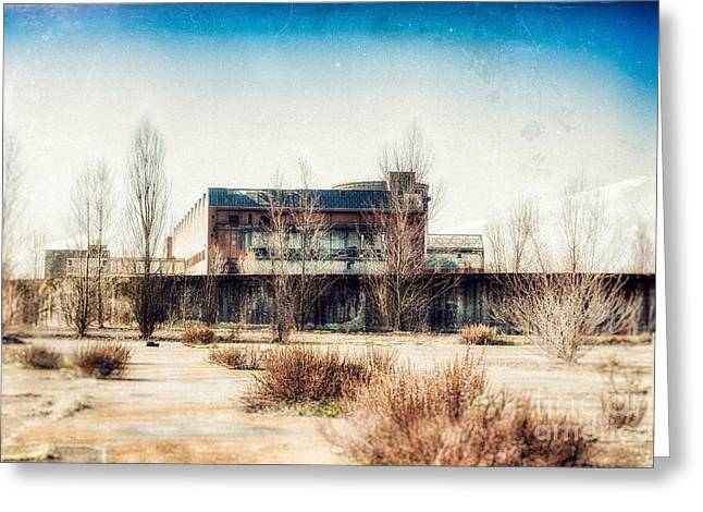 Abandoned Sugarmill Greeting Card by Traven Milovich