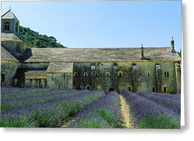Abbey In A Lavender Field, Abbaye De Greeting Card by Panoramic Images