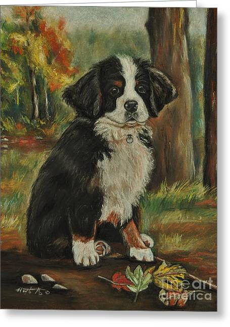 Abby - Bernese Mountain Dog Greeting Card by Heather Kertzer