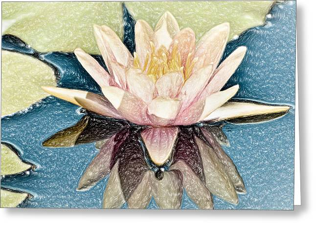 Abigail's Water Lily Greeting Card