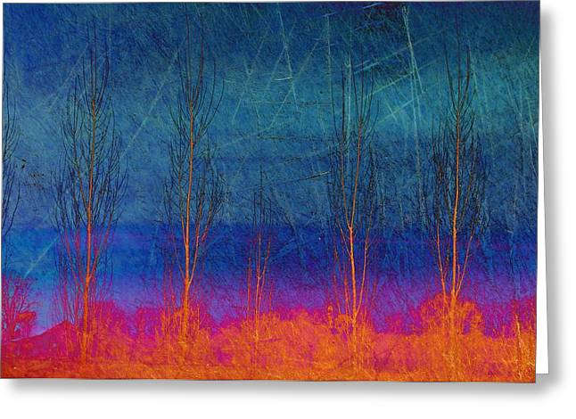 Ablaze II Greeting Card by Jan Amiss Photography