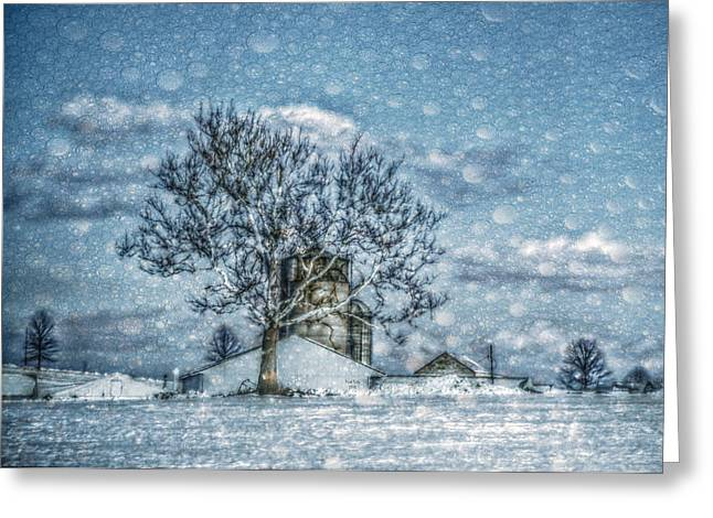 Above Barto Winter Greeting Card by Trish Tritz