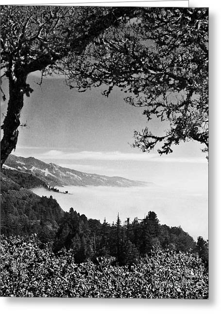 Greeting Card featuring the photograph Above Nepenthe In Big Sur by Joseph J Stevens