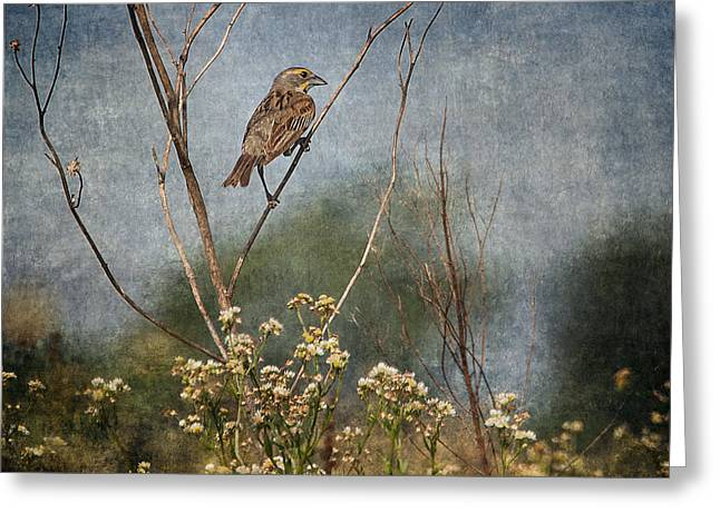 Above The Prairie Greeting Card by Dale Kincaid