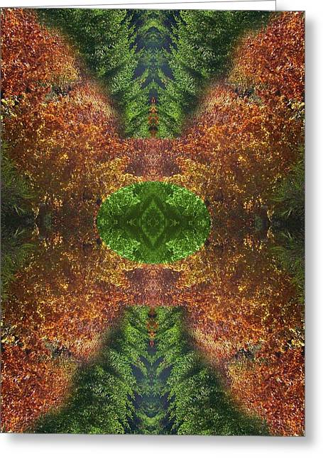 Abstract 164 Greeting Card by J D Owen