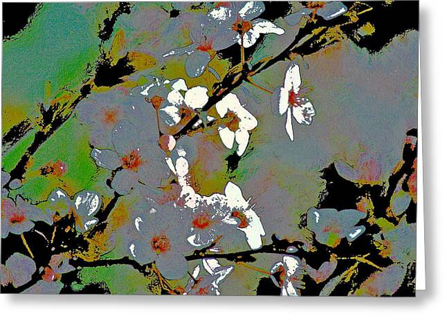Abstract 213 Greeting Card by Pamela Cooper