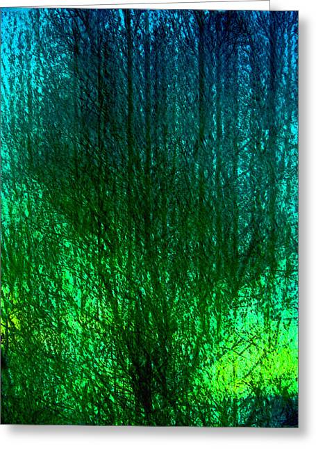 Abstract 90 Greeting Card by Pamela Cooper