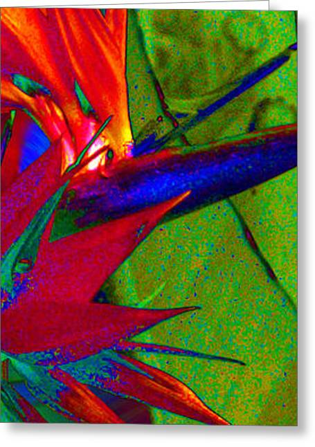 Abstract Bird Greeting Card by Ron Regalado