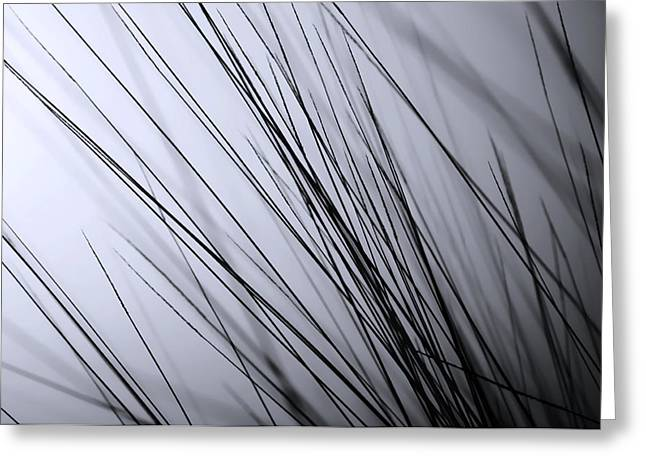 Abstract Black And White Greeting Card by Sabina  Horvat