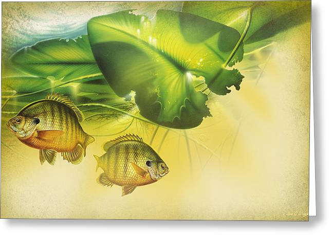 Abstract Blugill Greeting Card by JQ Licensing
