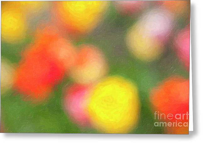 Abstract Colorful Tulips Greeting Card