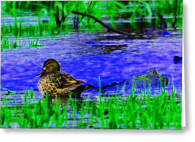 Abstract Duck Greeting Card by Valarie Davis