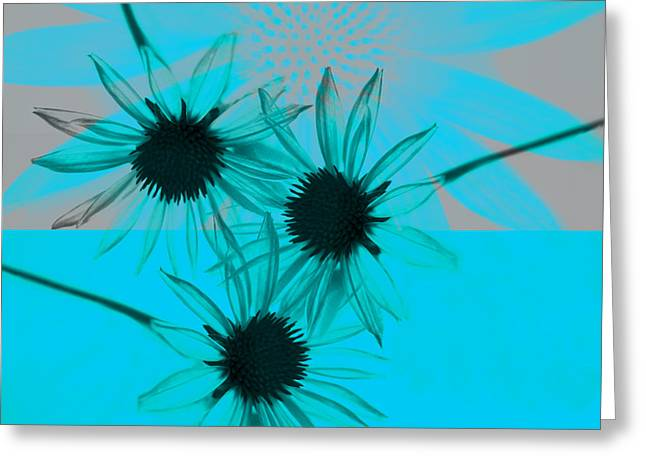 abstract - flowers - Flower Collage  Greeting Card by Ann Powell