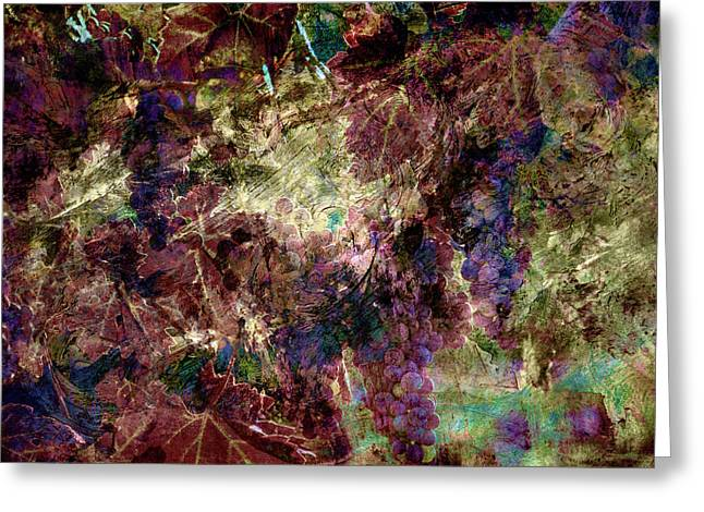 Greeting Card featuring the photograph Abstract Grapes On Vine Number Four by Bob Coates