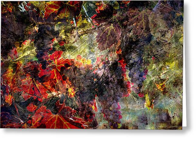 Greeting Card featuring the photograph Abstract Grapes On Vine Number Two by Bob Coates